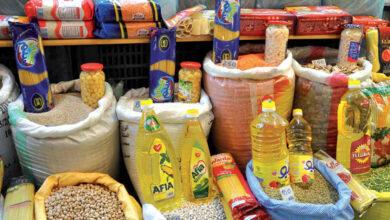 تجارة المواد الغذائية بالجملة في مصر