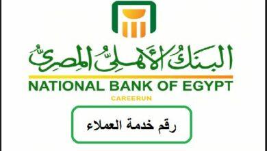 رقم تليفون الخط الساخن للبنك الأهلي المصري