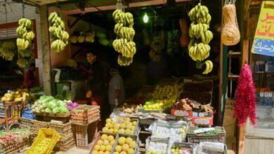 كيف اشتغل في سوق الخضار